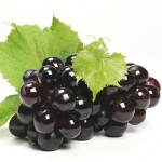 Black grapes with leaves