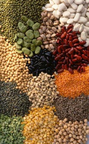 Posalı Gıdalar ve Proteinler Sizi Daha Uzun Süre Tok Tutarlar