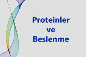 Yanınızda Hangi Proteinleri Taşıyabilirsiniz?