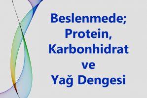 Protein, Karbonhidrat ve Yağlar Arasında Denge Kurmak