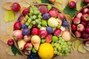 Yaz Sonu Meyveleri; Rengârenk